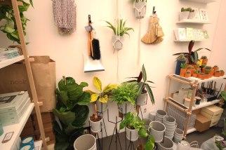 Nook - Curated design interior items.