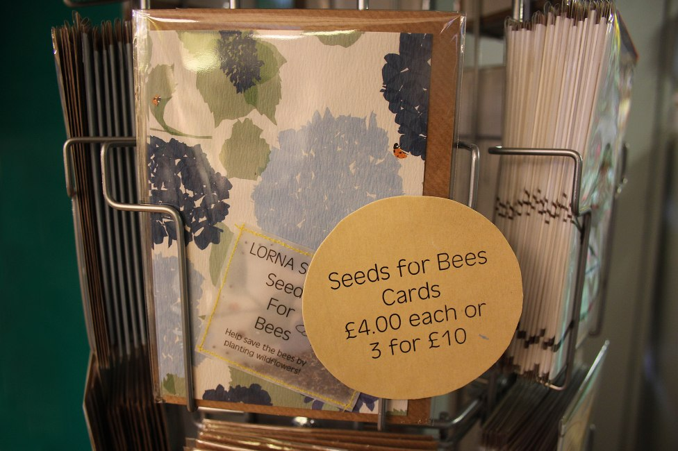 seeds-for-bees-cards