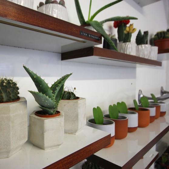 artists-plant-pots