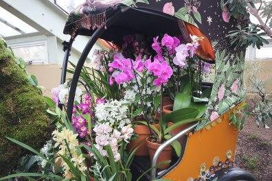 orchid-filled-rickshaw