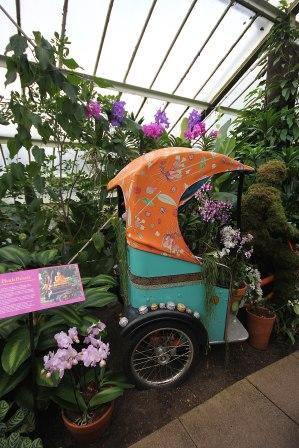 rickshaw-display