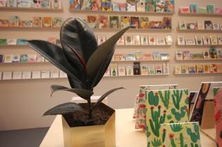 Wrap - Plant life
