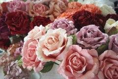 Posy & Pot Roses