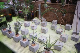 Cuemars Concrete Planters