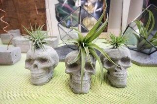 Cuemars Skulls