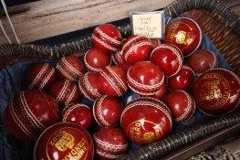 Shiny Cricket Balls
